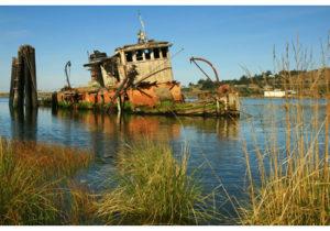 shipwreck in Gold Beach