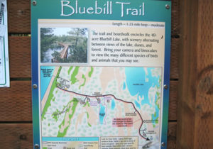 Bluebill Trail
