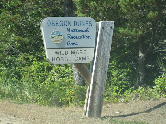 Horse Riding & Camping on the Oregon and California Coasts