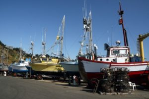 Port Orford Boats