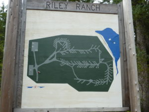 Riley Ranch